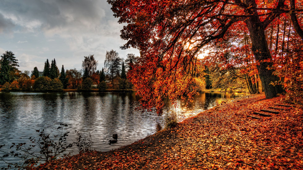 Exciting Places to See the Fall Colors
