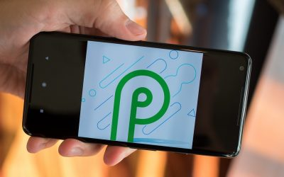 Android Q with Google's Pixel and Pixel XL! Updated