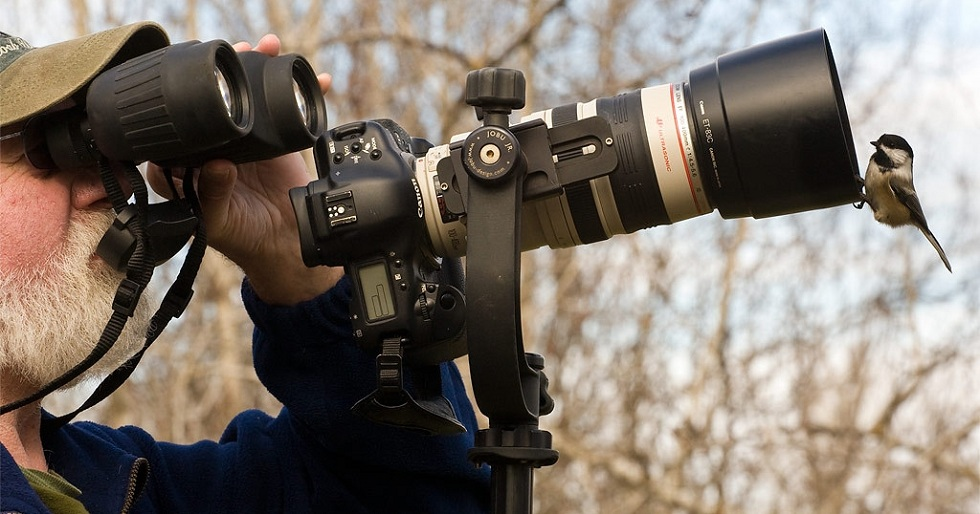 Are You a Photographer! Get the best DSLR cameras