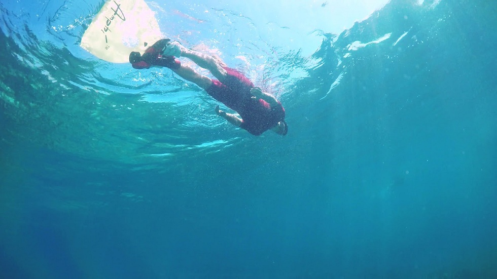 Amphi Bionic Mermaids! Ready to Swim