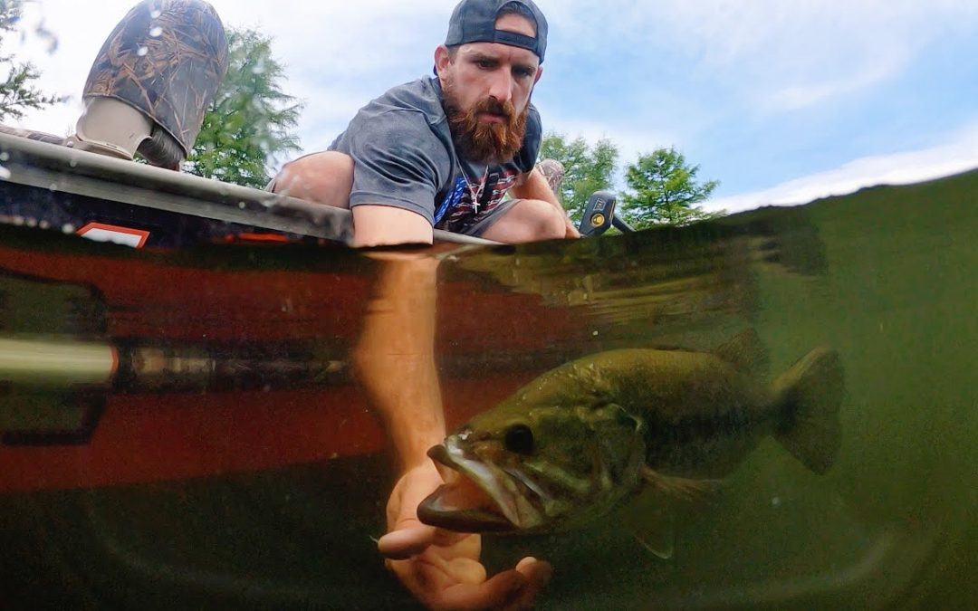 Can You Catch The Fish Like That? Bass Hunting Equipment