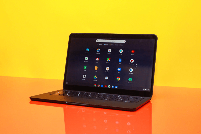 Google Pixelbook Go display
